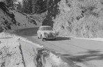 153-1962-b1_3CASDDJVW
